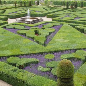 Chateau Villandry garden, Loire Valley, 2004